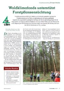 Waldklimafonds unterstützt Forstpflanzenzüchtung