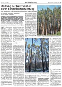 Stärkung der Nutzfunktion durch Forstpflanzenzüchtung