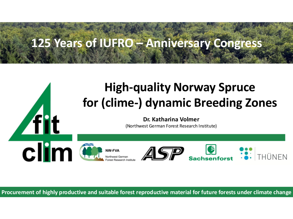 High-quality Norway Spruce for (clime-) dynamic Breeding Zones